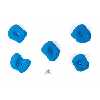 Roof Jugs XL2 (2) - Holds.fr