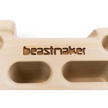 Beastmaker 1000 (6) - Holds.fr